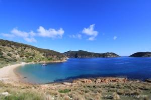 East Cove Deal Island