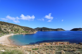 Deal Island
