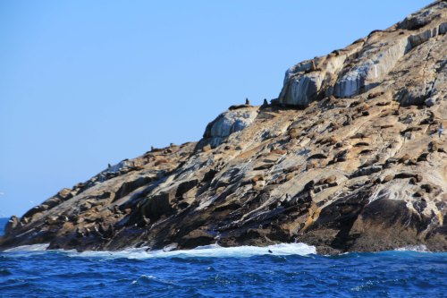 Big Rock - Judgment Rocks