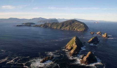 Maatsuyker Group of Islands, Tasmania