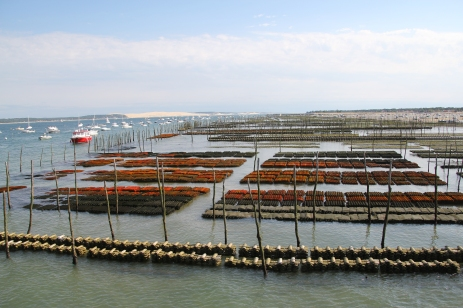 Oyster Beds at Arcachon