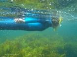 Chris snorkeling