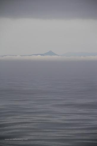 MM46 Foggy Start
