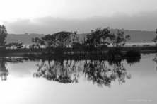 MM48 Dawn Reflections
