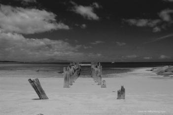 MM51 Lillies Beach, Flinders Island