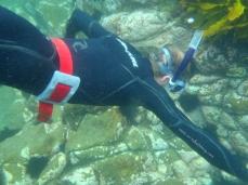 Wade Snorkeling