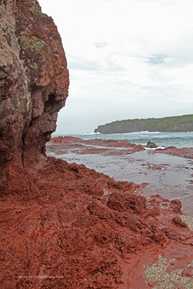 Red cliffs at Hegartys Bay
