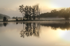 Moruya Dawn Reflections