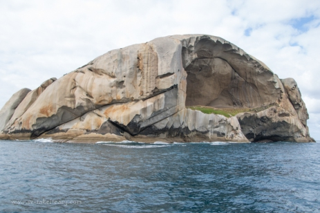 Cleft Island, Skull like
