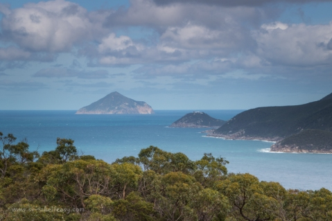 Waterloo Bay & Rodondo Island