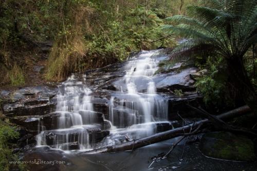 Cora Lynn Falls, Otways