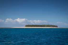 Masthead Island-20