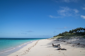 Masthead Island-8