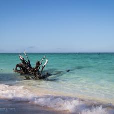 Masthead Island