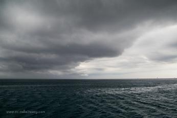 Fitzroy Reef-25