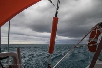 Fitzroy Reef-26