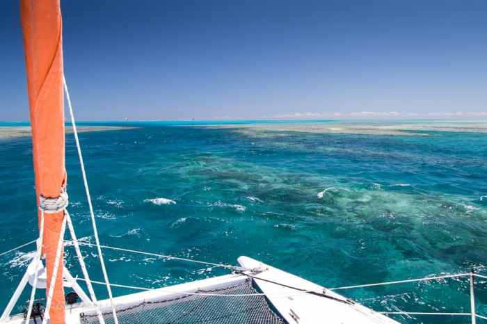 Fitzroy Reef-3