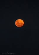 Blood Moon past Ballina