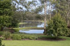 Flooded home paddocks at Lisa & Waz's