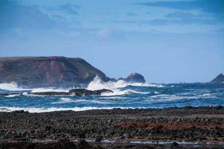 Wild Dog Bluff, Phillip Island