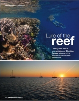 Lure of Reef