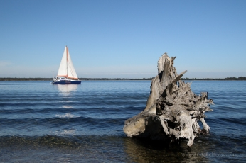 Take It Easy sailing past Metung