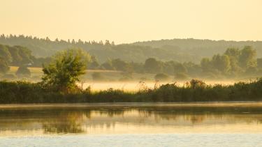 Early morning mist along La Vilaine