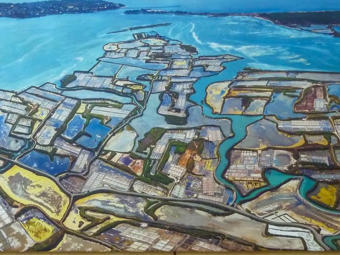 guerande-salt-marshes-2