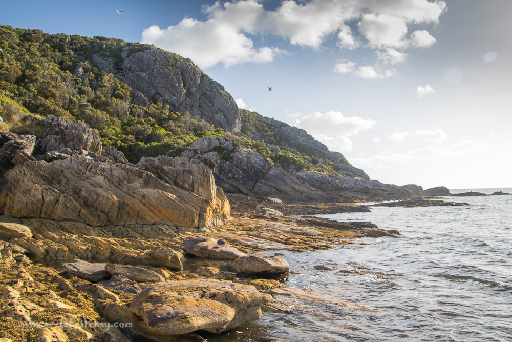 Rugged shores of Hunter Island