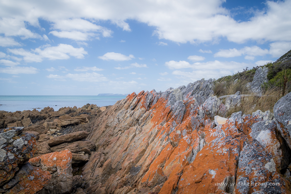 Jagged foreshore at Rocky Cape
