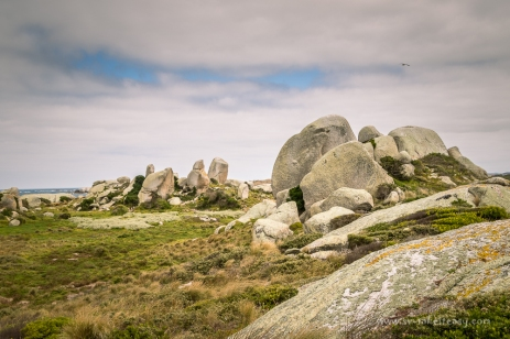 Granite tors of Preservation Island
