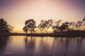 Sunrise at Picnic Arm, Gippsland Lakes, before the work begins