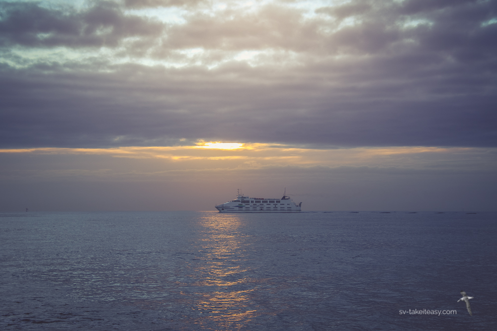 Queenscliff ferry at dawn