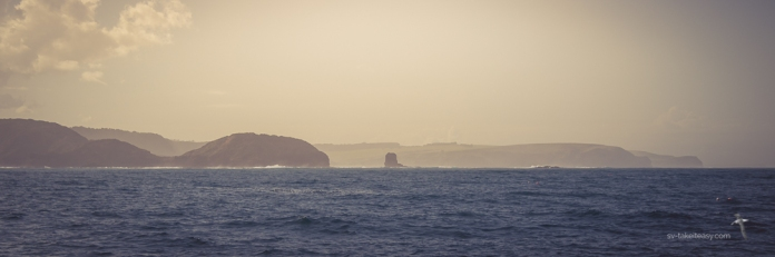 Cape Schanck & Pulpit Rock