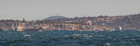 The Harbour Bridge poking at the top of the cliffs
