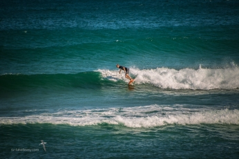 Surfy boy