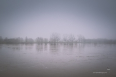 Foggy morning at Meung Sur Loire