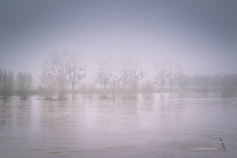 We can hardly see the other bank of the Loire