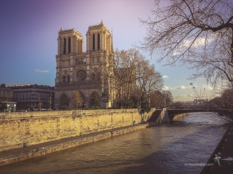 Front view of Notre Dame on a sunnier day