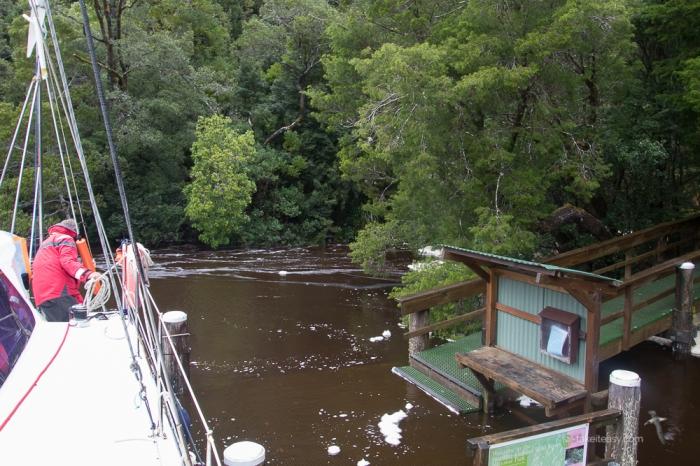 TAS 2018 - Gordon River - -2437