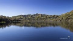 Gordon River Reflections
