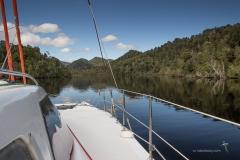 Up the Gordon River