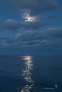 Full moon over Bass Strait