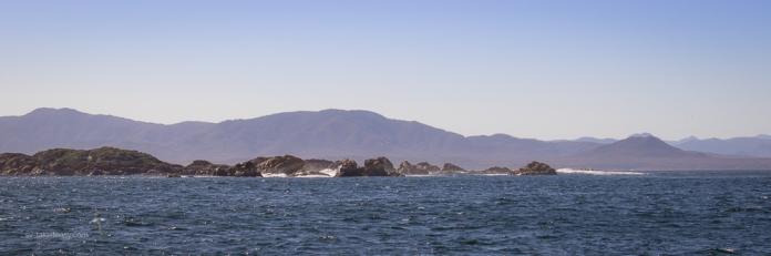 Low Rocky Point