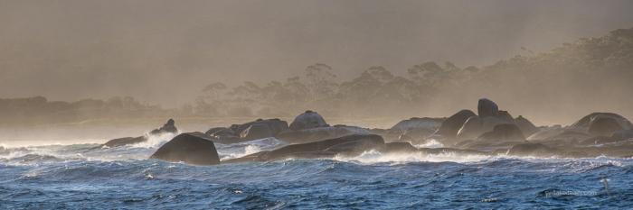 Bass Strait --5245