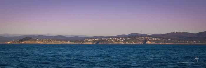 Tasman Sea --5419
