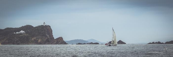 Sailing past Seal Rocks