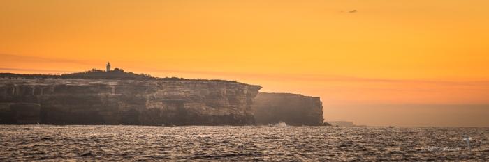 Off Sydney -5862