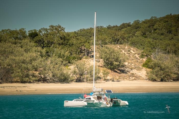 Curlew Island -9240.jpg
