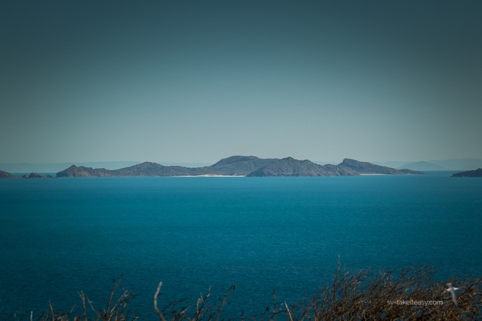 Curlew Island -9295.jpg